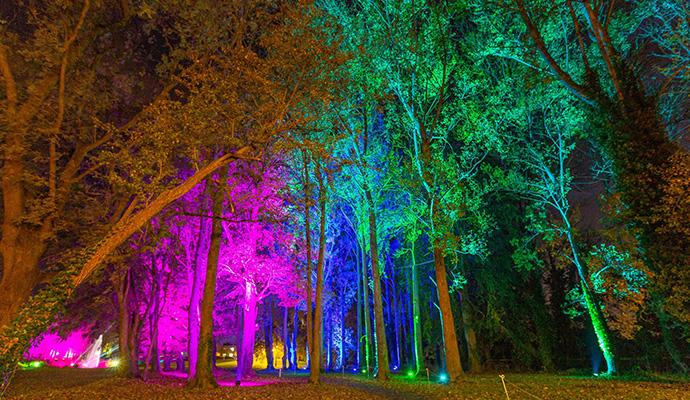 Wonderlights